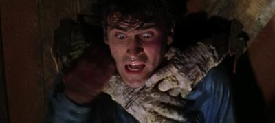film the evil dead 1981