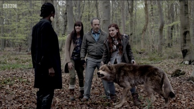 review series wolfblood season 3