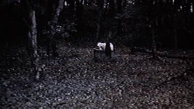 ringu 1998